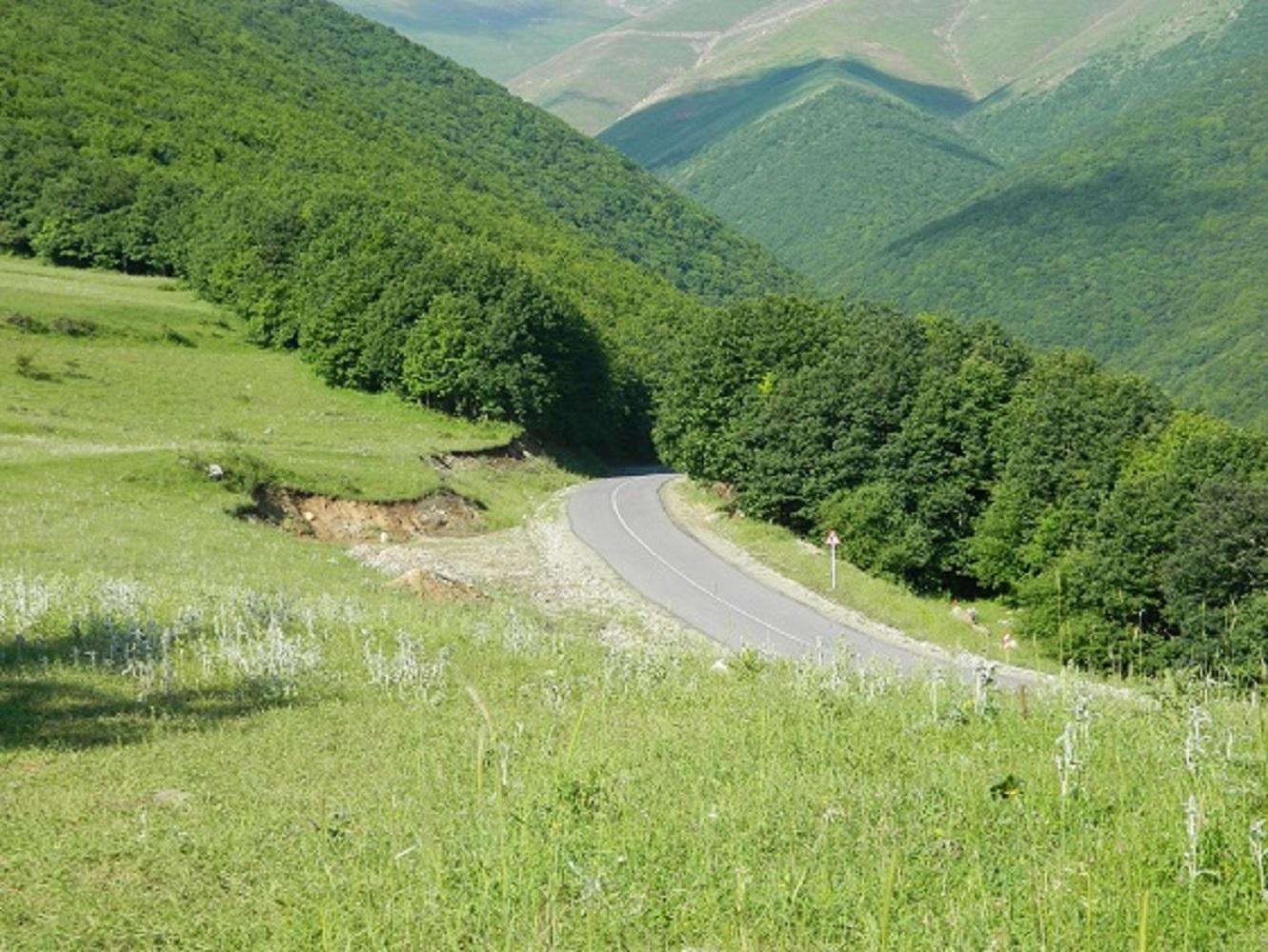 تصویر از جنگل های ارسباران بهشت آذربایجان