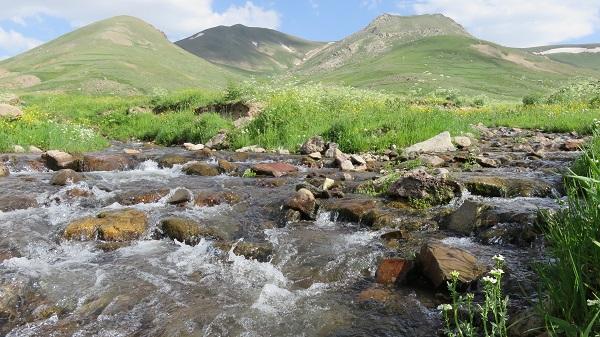 تصویر از ارشد چمن – کندوان – آذربایجان شرقی