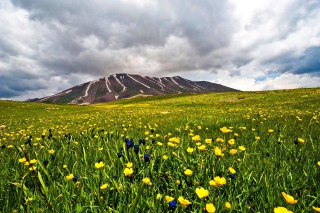 تصویر از رشته کوه سهند