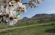 قیبله داغی - آذرشهر