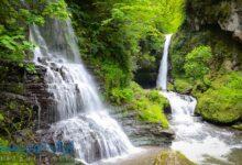 تصویر از تور آبشارهای گیلان